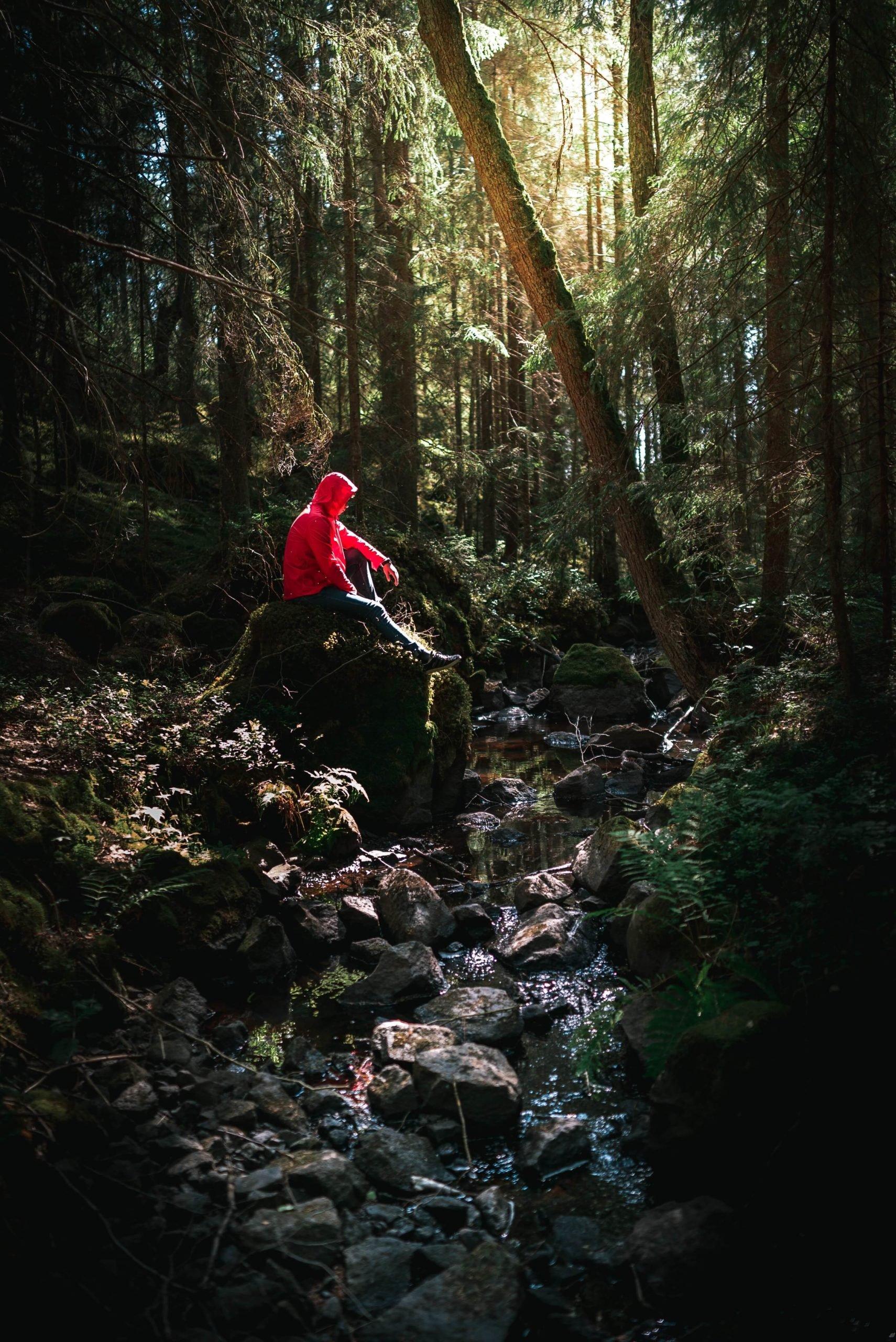 ember az erdőben